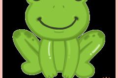 Animal_Frog