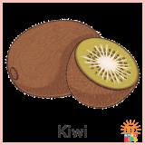 FruitsAndVegetables_Kiwi