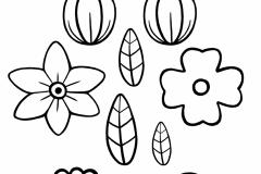 BlackAndWhite.Flowers