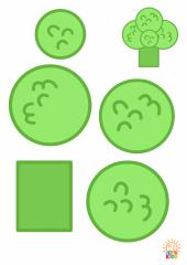 Broccoli.Color_