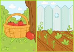 FruitsAndVegetables.Sorting.Color_