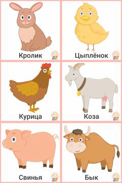 Animals.Far_.RU_.1